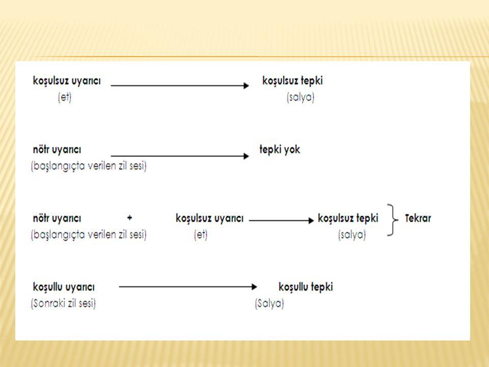  Bilgi Depoları (Bellek ve Bellek Türleri) A.