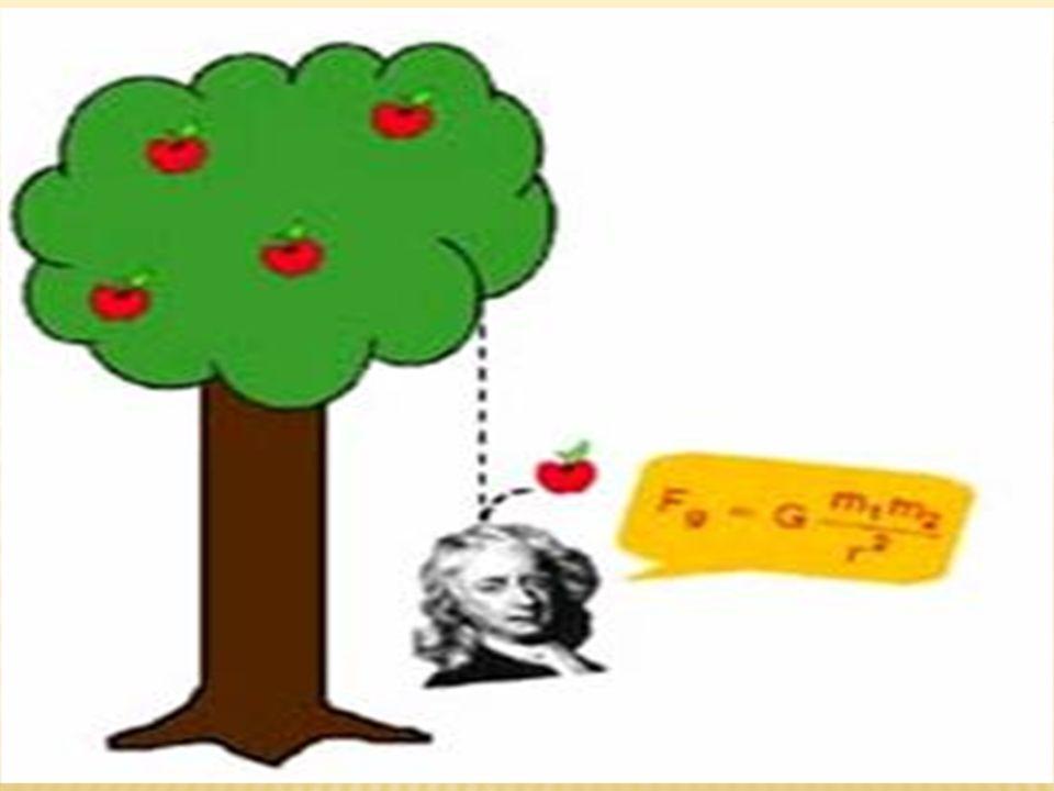  Pragnanz Yasası  Algısal değişmezler  Algıda Seçicilik  Coğrafi Çevre ve Davranışsal Çevre