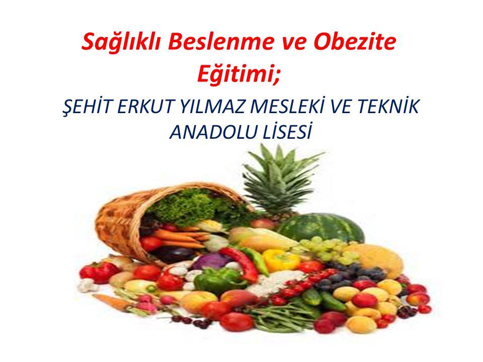 Sağlıklı Beslenme ve Obezite Eğitimi; ŞEHİT ERKUT YILMAZ MESLEKİ VE TEKNİK ANADOLU LİSESİ