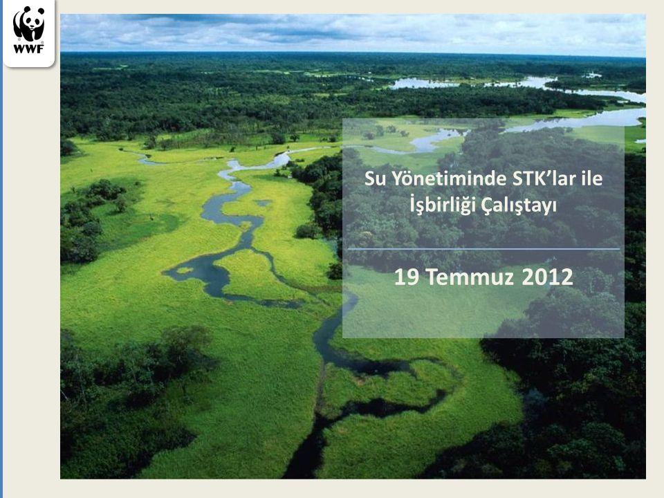 Su Yönetiminde STK'lar ile İşbirliği Çalıştayı 19 Temmuz 2012