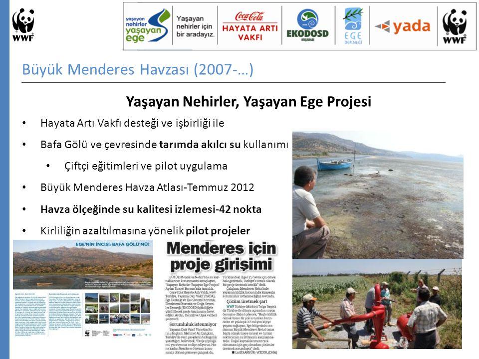 Büyük Menderes Havzası (2007-…) Yaşayan Nehirler, Yaşayan Ege Projesi Hayata Artı Vakfı desteği ve işbirliği ile Bafa Gölü ve çevresinde tarımda akılcı su kullanımı Çiftçi eğitimleri ve pilot uygulama Büyük Menderes Havza Atlası-Temmuz 2012 Havza ölçeğinde su kalitesi izlemesi-42 nokta Kirliliğin azaltılmasına yönelik pilot projeler