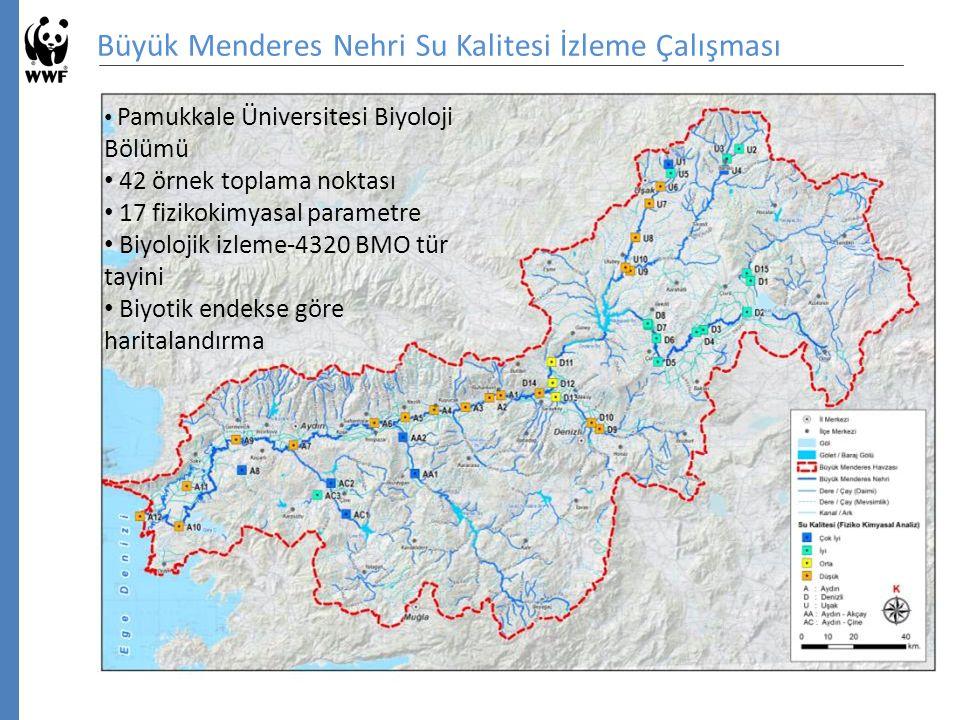 Büyük Menderes Nehri Su Kalitesi İzleme Çalışması Pamukkale Üniversitesi Biyoloji Bölümü 42 örnek toplama noktası 17 fizikokimyasal parametre Biyolojik izleme-4320 BMO tür tayini Biyotik endekse göre haritalandırma