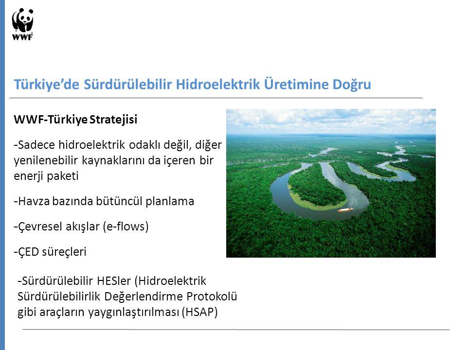WWF-Türkiye Stratejisi - Sadece hidroelektrik odaklı değil, diğer yenilenebilir kaynaklarını da içeren bir enerji paketi - Havza bazında bütüncül planlama - Çevresel akışlar (e-flows) - ÇED süreçleri Türkiye'de Sürdürülebilir Hidroelektrik Üretimine Doğru - Sürdürülebilir HESler (Hidroelektrik Sürdürülebilirlik Değerlendirme Protokolü gibi araçların yaygınlaştırılması (HSAP)