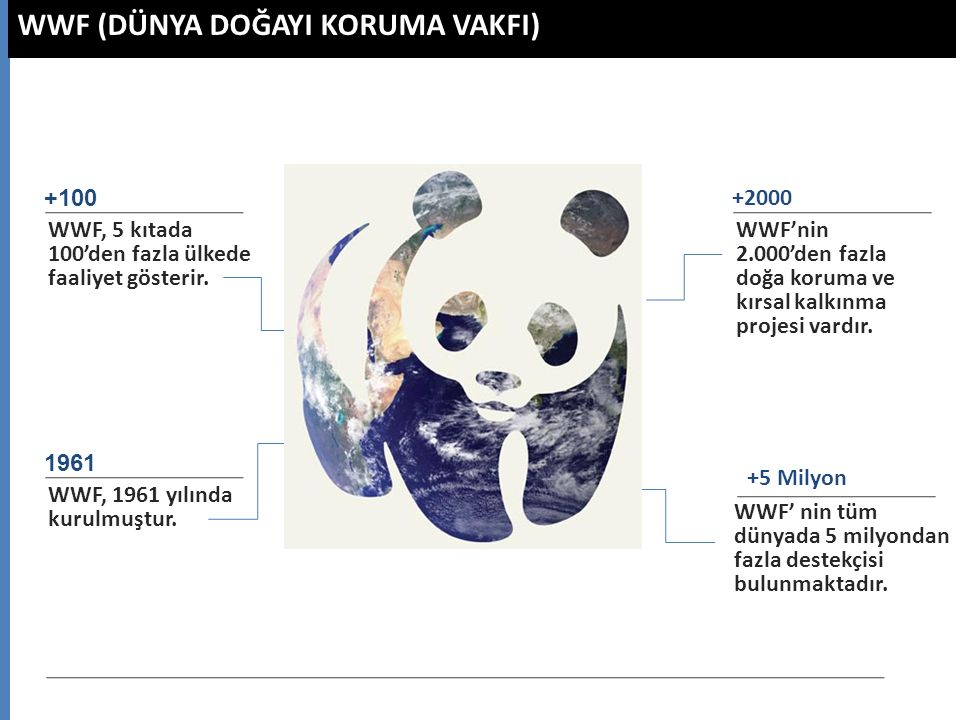 WWF (DÜNYA DOĞAYI KORUMA VAKFI) WWF, 5 kıtada 100'den fazla ülkede faaliyet gösterir. +100 WWF, 1961 yılında kurulmuştur. 1961 WWF'nin 2.000'den fazla