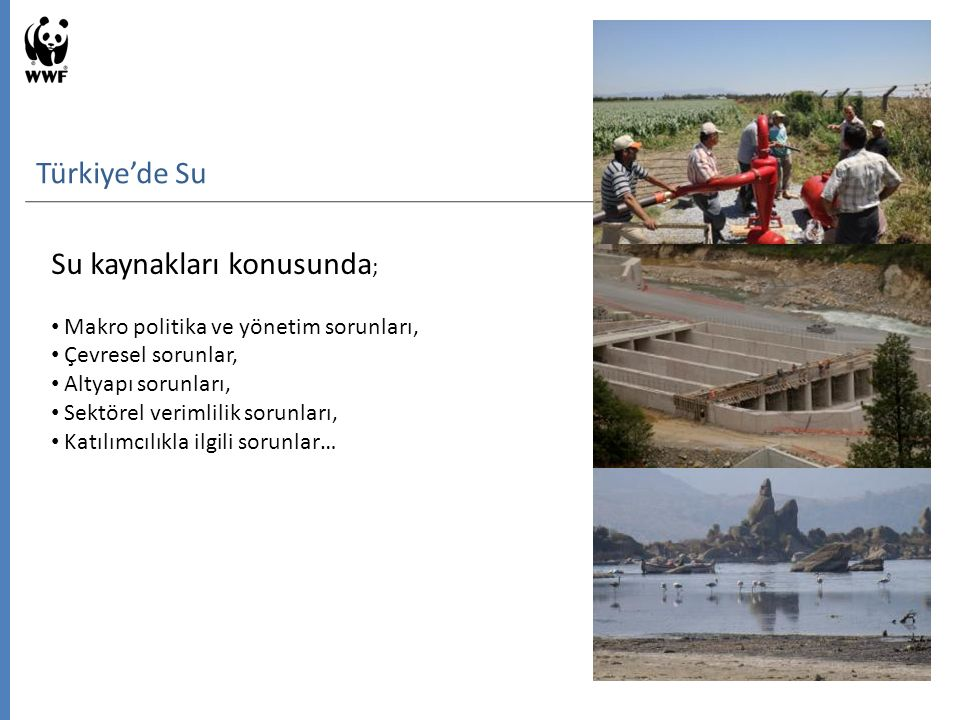 Su kaynakları konusunda ; Makro politika ve yönetim sorunları, Çevresel sorunlar, Altyapı sorunları, Sektörel verimlilik sorunları, Katılımcılıkla ilgili sorunlar… Türkiye'de Su