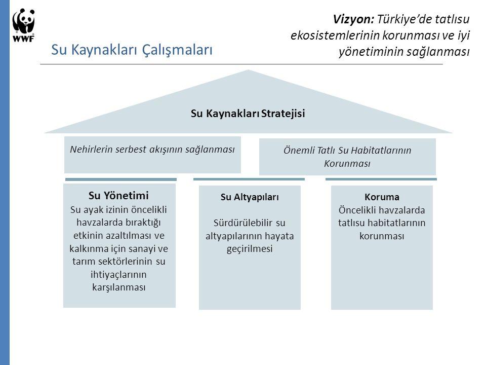 Su Kaynakları Çalışmaları Vizyon: Türkiye'de tatlısu ekosistemlerinin korunması ve iyi yönetiminin sağlanması Su Kaynakları Stratejisi Su Yönetimi Su ayak izinin öncelikli havzalarda bıraktığı etkinin azaltılması ve kalkınma için sanayi ve tarım sektörlerinin su ihtiyaçlarının karşılanması Su Altyapıları Sürdürülebilir su altyapılarının hayata geçirilmesi Koruma Öncelikli havzalarda tatlısu habitatlarının korunması Nehirlerin serbest akışının sağlanması Önemli Tatlı Su Habitatlarının Korunması