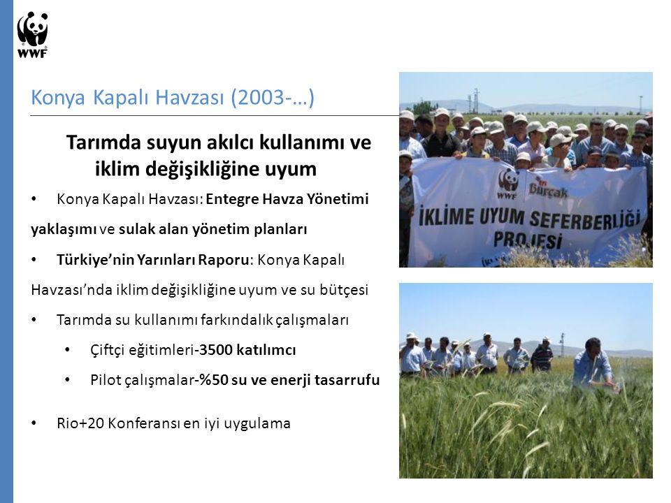 Konya Kapalı Havzası (2003-…) Tarımda suyun akılcı kullanımı ve iklim değişikliğine uyum Konya Kapalı Havzası: Entegre Havza Yönetimi yaklaşımı ve sulak alan yönetim planları Türkiye'nin Yarınları Raporu: Konya Kapalı Havzası'nda iklim değişikliğine uyum ve su bütçesi Tarımda su kullanımı farkındalık çalışmaları Çiftçi eğitimleri-3500 katılımcı Pilot çalışmalar-%50 su ve enerji tasarrufu Rio+20 Konferansı en iyi uygulama