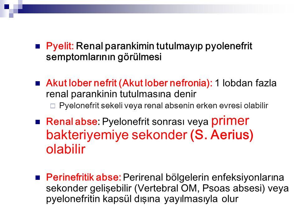 Pyelit: Renal parankimin tutulmayıp pyolenefrit semptomlarının görülmesi Akut lober nefrit (Akut lober nefronia): 1 lobdan fazla renal parankinin tutulmasına denir  Pyelonefrit sekeli veya renal absenin erken evresi olabilir Renal abse: Pyelonefrit sonrası veya primer bakteriyemiye sekonder (S.