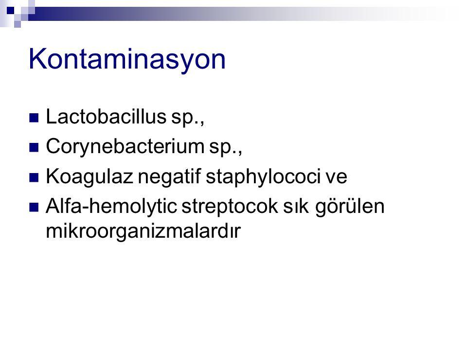 Kontaminasyon Lactobacillus sp., Corynebacterium sp., Koagulaz negatif staphylococi ve Alfa-hemolytic streptocok sık görülen mikroorganizmalardır