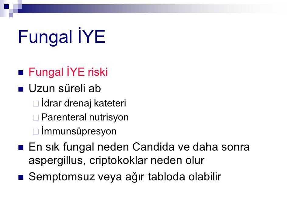 Fungal İYE Fungal İYE riski Uzun süreli ab  İdrar drenaj kateteri  Parenteral nutrisyon  İmmunsüpresyon En sık fungal neden Candida ve daha sonra aspergillus, criptokoklar neden olur Semptomsuz veya ağır tabloda olabilir