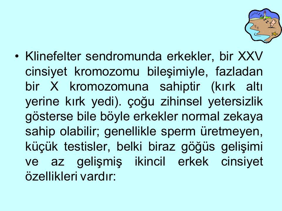 Klinefelter sendromunda erkekler, bir XXV cinsiyet kromozomu bileşimiyle, fazladan bir X kromozomuna sahiptir (kırk altı yerine kırk yedi).