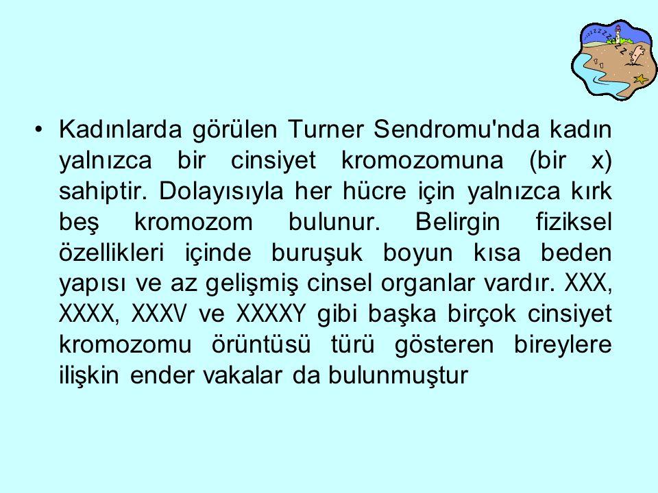 Kadınlarda görülen Turner Sendromu nda kadın yalnızca bir cinsiyet kromozomuna (bir x) sahiptir.