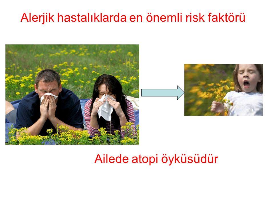 Alerjik hastalıklarda en önemli risk faktörü Ailede atopi öyküsüdür