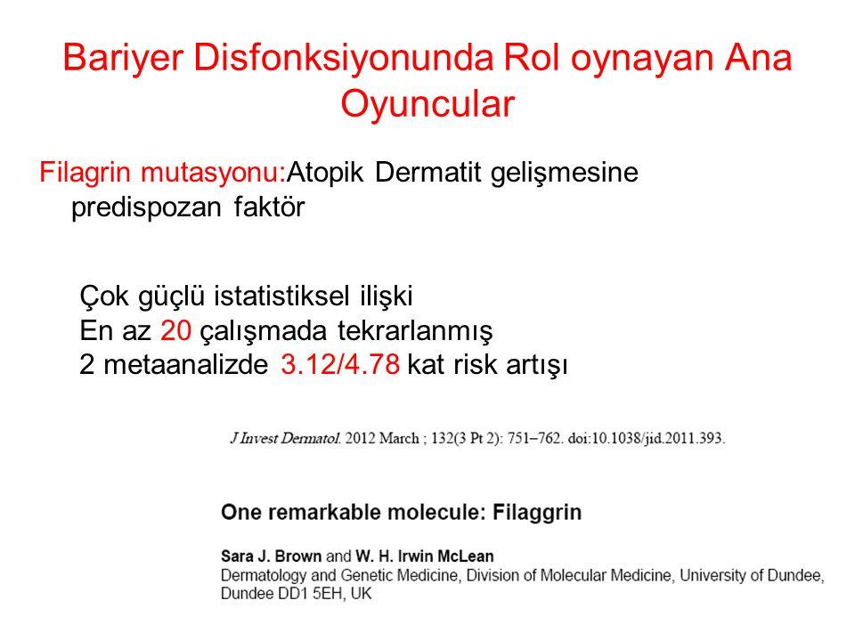 Bariyer Disfonksiyonunda Rol oynayan Ana Oyuncular Filagrin mutasyonu:Atopik Dermatit gelişmesine predispozan faktör Çok güçlü istatistiksel ilişki En az 20 çalışmada tekrarlanmış 2 metaanalizde 3.12/4.78 kat risk artışı