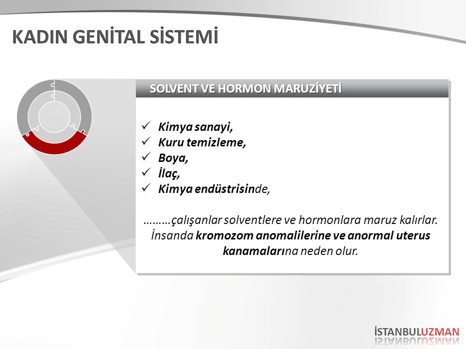 SOLVENT VE HORMON MARUZİYETİ
