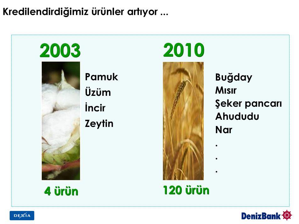 Kredilendirdiğimiz ürünler artıyor... 2003 4 ürün 120 ürün 2010 Pamuk Üzüm İncir Zeytin Buğday Mısır Şeker pancarı Ahududu Nar.