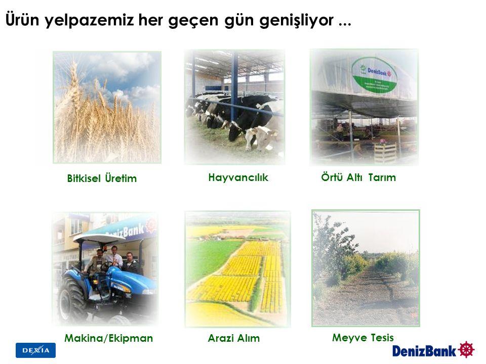 Ürün yelpazemiz her geçen gün genişliyor... Makina/Ekipman Hayvancılık Örtü Altı Tarım Arazi Alım Bitkisel Üretim Meyve Tesis