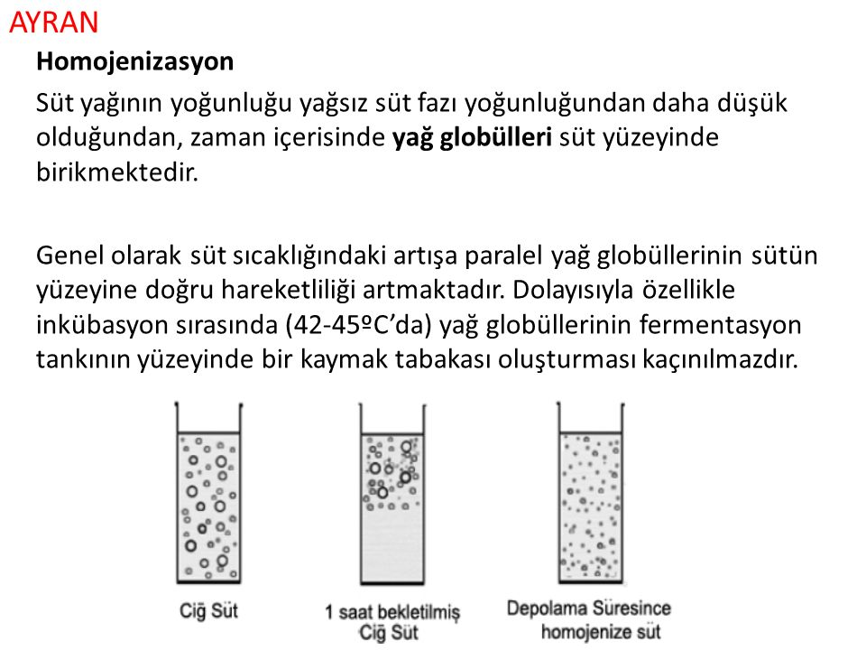 AYRAN Homojenizasyon Süt yağının yoğunluğu yağsız süt fazı yoğunluğundan daha düşük olduğundan, zaman içerisinde yağ globülleri süt yüzeyinde birikmek