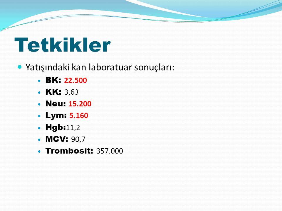 Tetkikler Yatışındaki kan laboratuar sonuçları: BK: 22.500 KK: 3,63 Neu: 15.200 Lym: 5.160 Hgb: 11,2 MCV: 90,7 Trombosit: 357.000