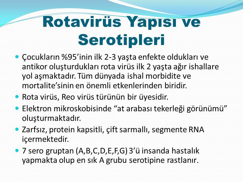 Rotavirüs Yapısı ve Serotipleri Çocukların %95'inin ilk 2-3 yaşta enfekte oldukları ve antikor oluşturdukları rota virüs ilk 2 yaşta ağır ishallare yol aşmaktadır.