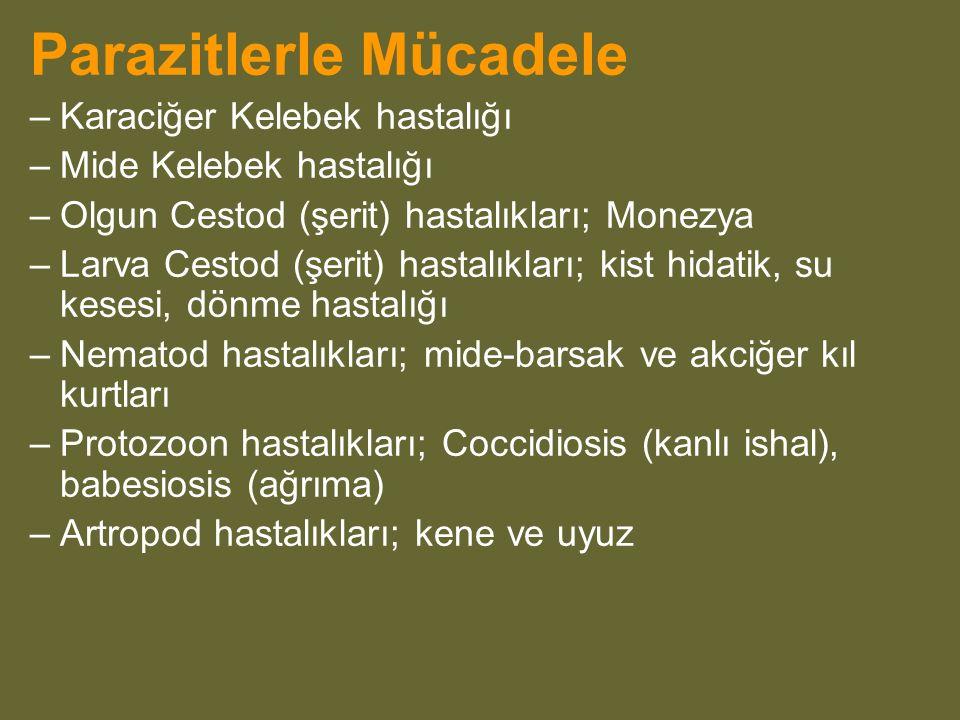 Parazitlerle Mücadele –Karaciğer Kelebek hastalığı –Mide Kelebek hastalığı –Olgun Cestod (şerit) hastalıkları; Monezya –Larva Cestod (şerit) hastalıkları; kist hidatik, su kesesi, dönme hastalığı –Nematod hastalıkları; mide-barsak ve akciğer kıl kurtları –Protozoon hastalıkları; Coccidiosis (kanlı ishal), babesiosis (ağrıma) –Artropod hastalıkları; kene ve uyuz