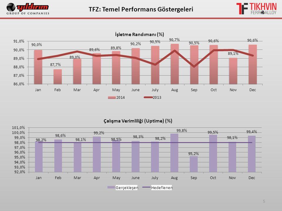 5 ТFZ: Temel Performans Göstergeleri Gerçekleşen Hedeflenen