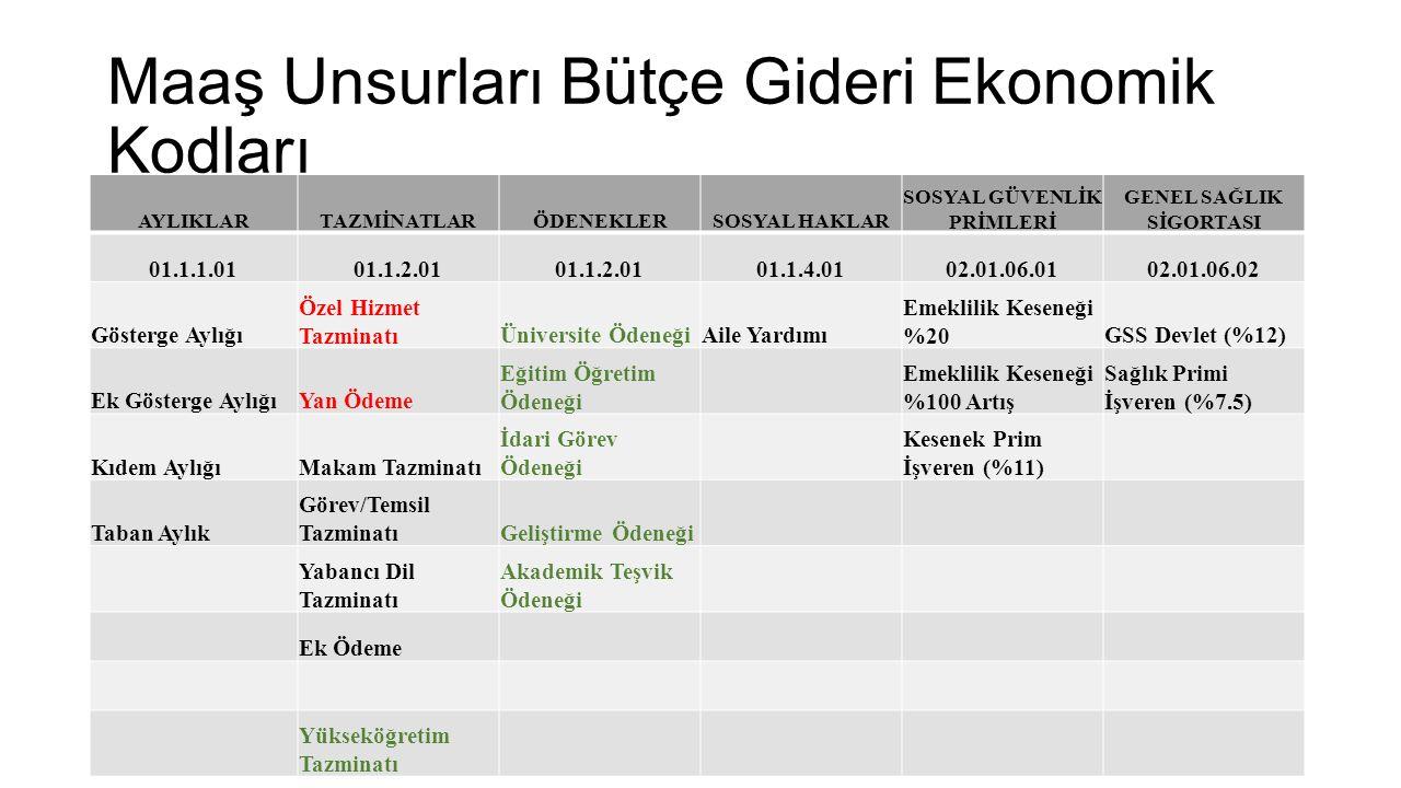 Maaş Unsurları Bütçe Gideri Ekonomik Kodları AYLIKLARTAZMİNATLARÖDENEKLERSOSYAL HAKLAR SOSYAL GÜVENLİK PRİMLERİ GENEL SAĞLIK SİGORTASI 01.1.1.0101.1.2