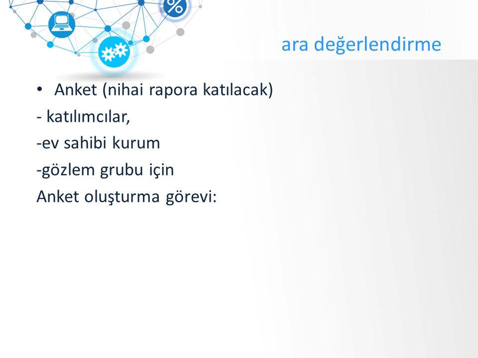 ara değerlendirme Anket (nihai rapora katılacak) - katılımcılar, -ev sahibi kurum -gözlem grubu için Anket oluşturma görevi: