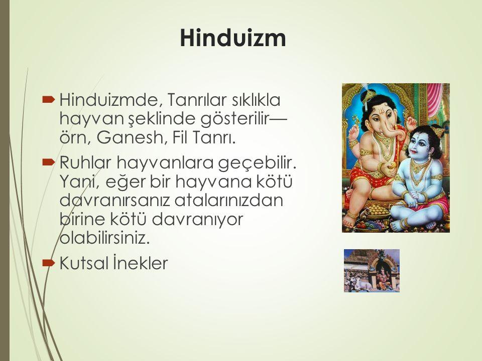 Hinduizm  Hinduizmde, Tanrılar sıklıkla hayvan şeklinde gösterilir— örn, Ganesh, Fil Tanrı.  Ruhlar hayvanlara geçebilir. Yani, eğer bir hayvana köt