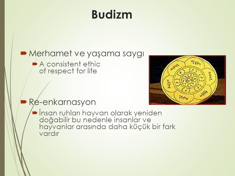 Budizm  Merhamet ve yaşama saygı  A consistent ethic of respect for life  Re-enkarnasyon  İnsan ruhları hayvan olarak yeniden doğabilir bu nedenle insanlar ve hayvanlar arasında daha küçük bir fark vardır