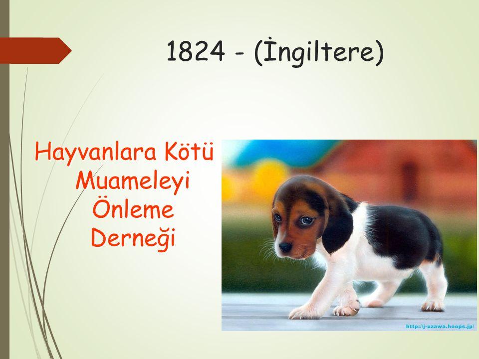 1824 - (İngiltere) Hayvanlara Kötü Muameleyi Önleme Derneği