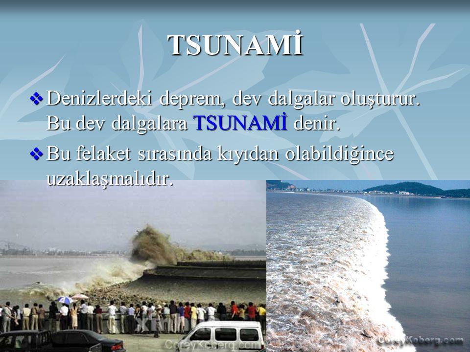 DOĞAL AFETLERAyten IŞILDAĞ27 TSUNAMİ  Denizlerdeki deprem, dev dalgalar oluşturur. Bu dev dalgalara TSUNAMİ denir.  Bu felaket sırasında kıyıdan ola