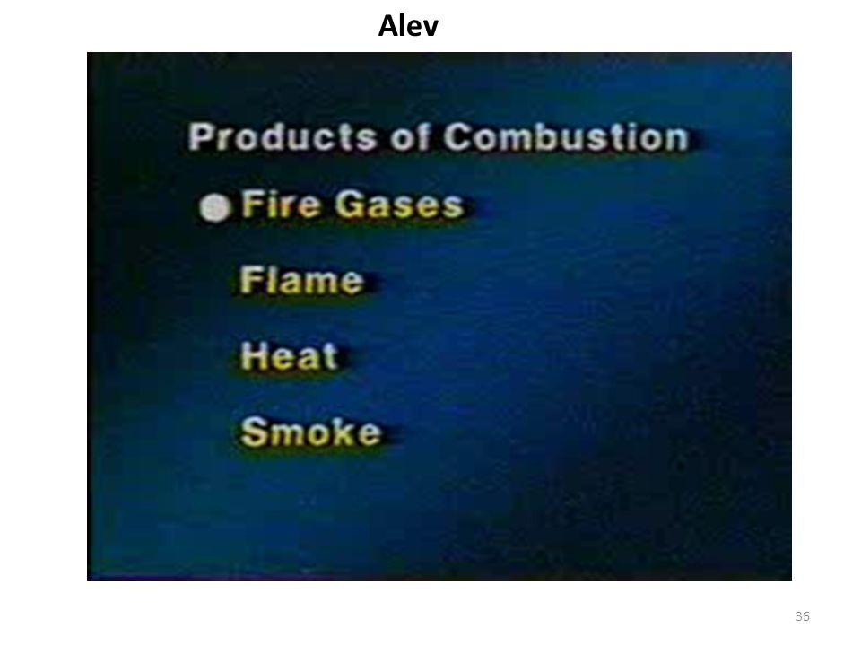 Alev 36