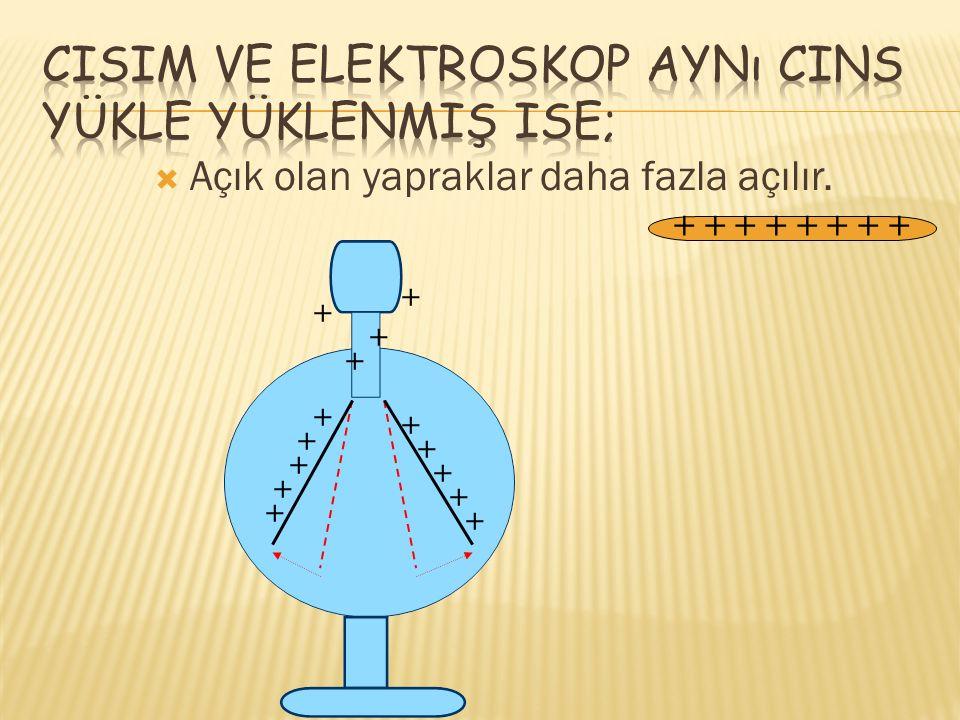 Nötr bir elektroskoba pozitif yüklü cisim yaklaştırıldığında; + + + + __ Kapalı olan yapraklar açılır.