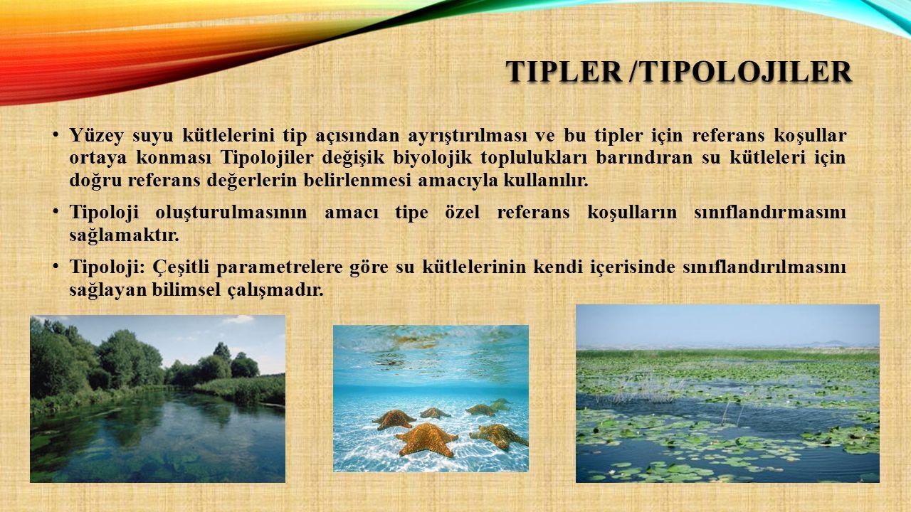 TIPLER /TIPOLOJILER Yüzey suyu kütlelerini tip açısından ayrıştırılması ve bu tipler için referans koşullar ortaya konması Tipolojiler değişik biyoloj