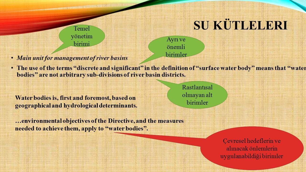 Yapay Su Kütleleri Sulak Alan = YAS Bağlantılı Ekosistemler Nehirler Geçiş Suları = haliç, delta, lagün Kıyı Suları Yeraltı SuyuGöller SU KÜTLESİ KATEGORİLERİ
