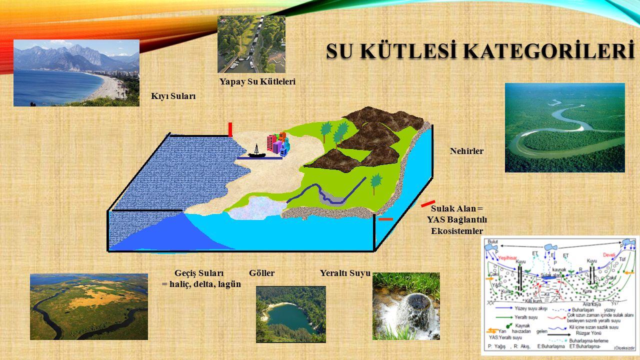 Yapay Su Kütleleri Sulak Alan = YAS Bağlantılı Ekosistemler Nehirler Geçiş Suları = haliç, delta, lagün Kıyı Suları Yeraltı SuyuGöller SU KÜTLESİ KATE