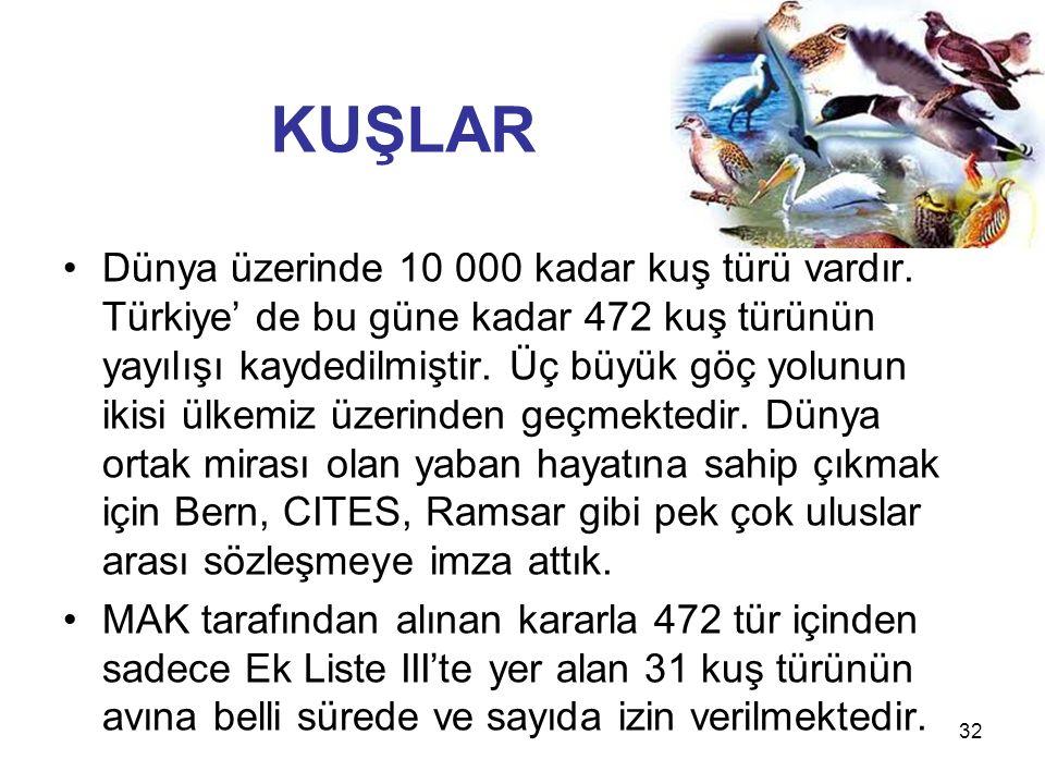 32 KUŞLAR Dünya üzerinde 10 000 kadar kuş türü vardır. Türkiye' de bu güne kadar 472 kuş türünün yayılışı kaydedilmiştir. Üç büyük göç yolunun ikisi ü