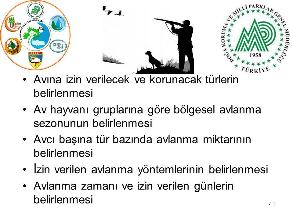 41 Avına izin verilecek ve korunacak türlerin belirlenmesi Av hayvanı gruplarına göre bölgesel avlanma sezonunun belirlenmesi Avcı başına tür bazında