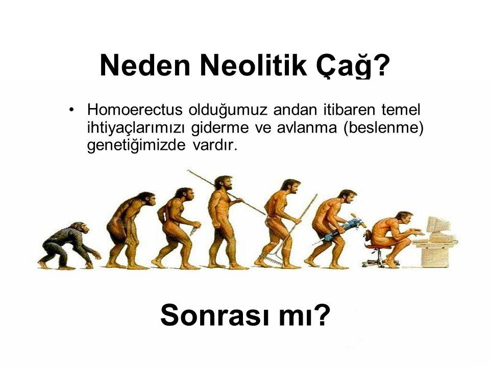 8 Neden Neolitik Çağ? Sonrası mı? Homoerectus olduğumuz andan itibaren temel ihtiyaçlarımızı giderme ve avlanma (beslenme) genetiğimizde vardır.