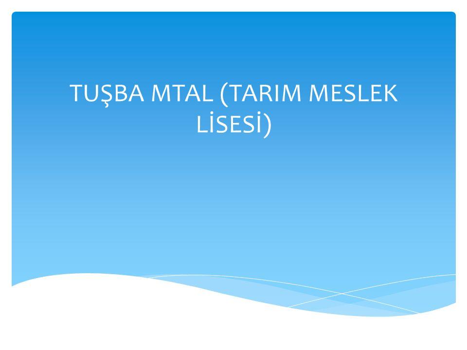 TUŞBA MTAL (TARIM MESLEK LİSESİ)