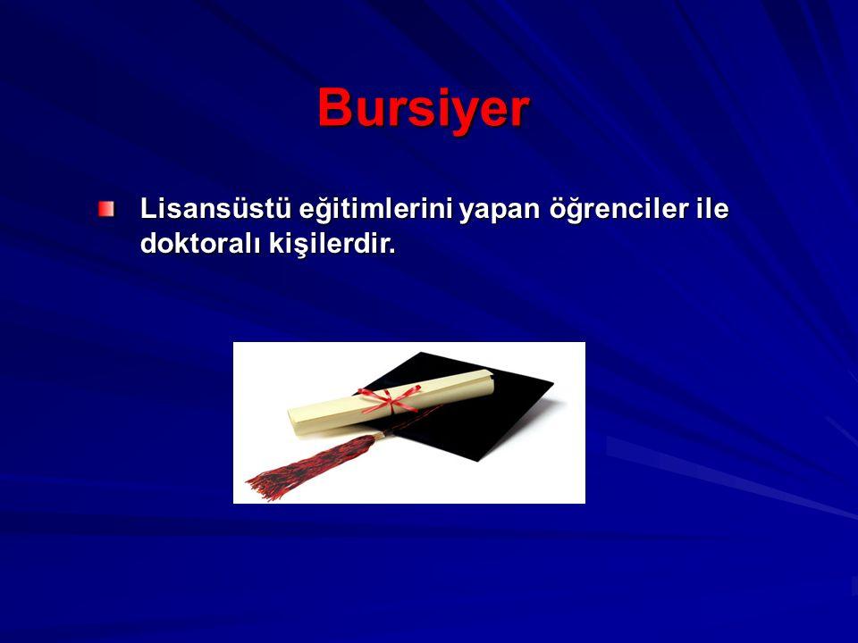 Bursiyer Lisansüstü eğitimlerini yapan öğrenciler ile doktoralı kişilerdir.
