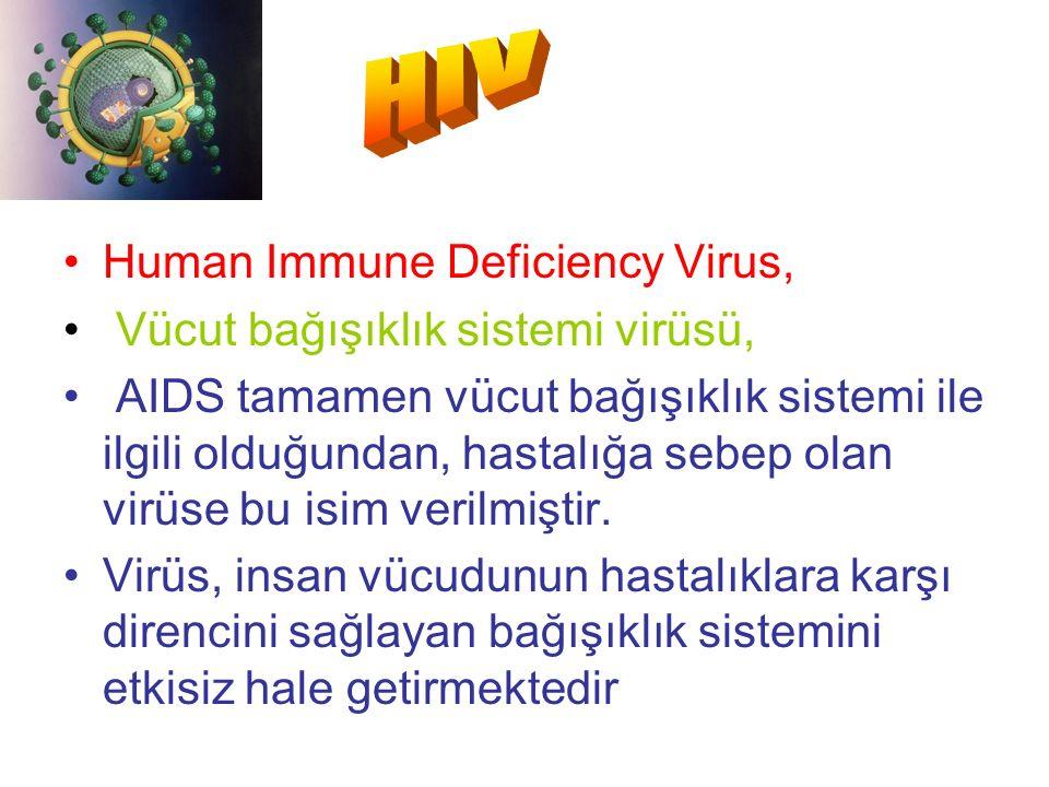 Human Immune Deficiency Virus, Vücut bağışıklık sistemi virüsü, AIDS tamamen vücut bağışıklık sistemi ile ilgili olduğundan, hastalığa sebep olan virüse bu isim verilmiştir.