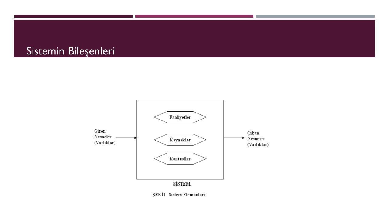 Varlık (Entity): Sistemin nesnesidir.Farklı nesneler farklı özelliklere sahiptir.