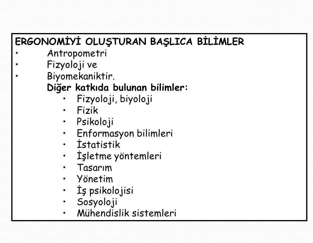 ERGONOMİYİ OLUŞTURAN BAŞLICA BİLİMLER Antropometri Fizyoloji ve Biyomekaniktir.