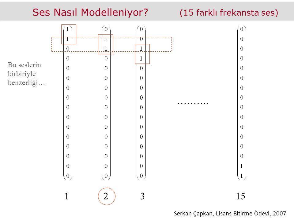 Ses Nasıl Modelleniyor? (15 farklı frekansta ses) ………. Bu seslerin birbiriyle benzerliği… 12315 Serkan Çapkan, Lisans Bitirme Ödevi, 2007