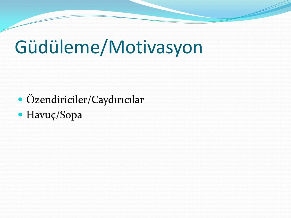 Güdüleme/Motivasyon Özendiriciler/Caydırıcılar Havuç/Sopa