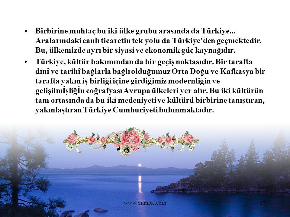 www.dilimce.com17 Birbirine muhtaç bu iki ülke grubu arasında da Türkiye...