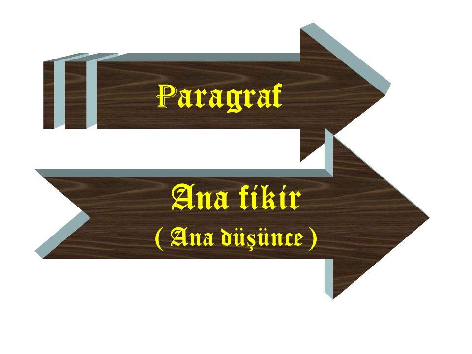 P aragraf Ana fikir ( Ana dü ş ünce )