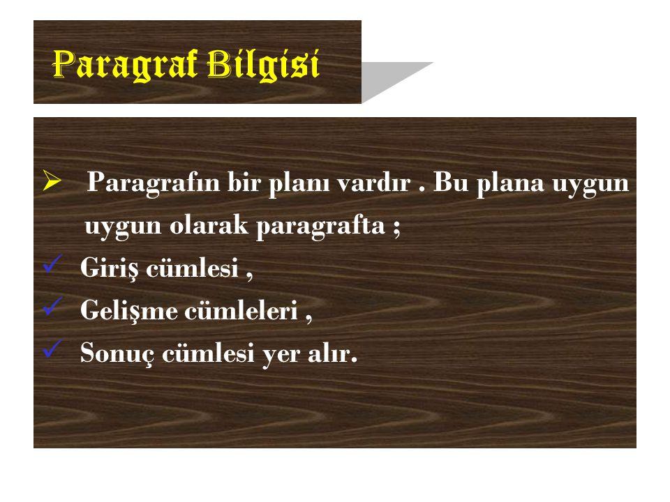 P aragraf B ilgisi  Paragrafın bir planı vardır.